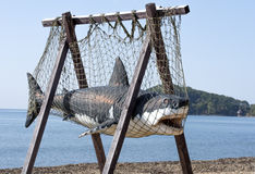 Shark. Moulage of a shark on seacoast royalty free stock photos