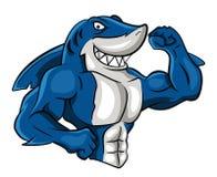 Shark Muscle. Eps 10  illustration Design Royalty Free Stock Images