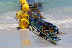 Shark Net on the Australian Coast. Closeup of shark net with vivid yellow buoys and blue netting covered in seaweed and kelp at the edge of the coast with ocean royalty free stock photography