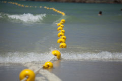 Shark Net. In Fish Hoek on False Bay Royalty Free Stock Image