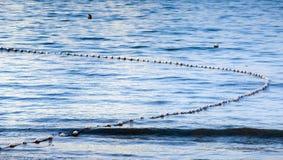 Shark Nets Stock Image