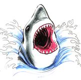 Shark in the ocean. Pencil illustration of a shark in the ocean Royalty Free Illustration