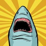 Shark ocean predator. Marine fish and water parks. Comic cartoon pop art retro vector illustration drawing Royalty Free Stock Photo