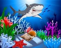 Shark in the ocean Royalty Free Stock Photo