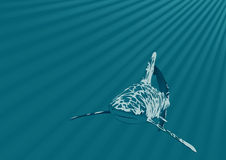 Shark in an ocean. Vector Royalty Free Stock Images