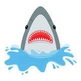Shark with open mouth. He jumps out of water, isolated on white background. Flat vector illustration Royalty Free Stock Image