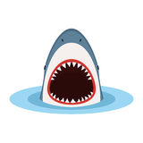 Shark with open mouth. And sharp teeth, jump out of water. Danger concept. Vector illustration in flat style isolated on white background Stock Illustration
