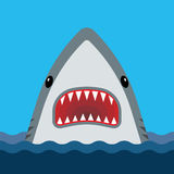 Shark with open mouth and sharp teeth Royalty Free Stock Images