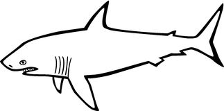 Shark. Outline drawing of a great white shark Royalty Free Stock Photography