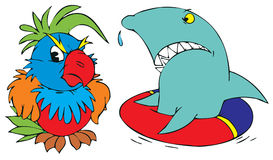 Shark and parrot Royalty Free Stock Photography