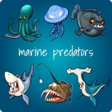 Shark, piranha, jellyfish and other stock illustration