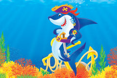 Shark Pirate stock illustration