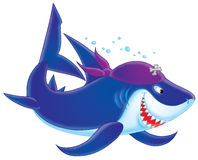 Shark Pirate Royalty Free Stock Photo