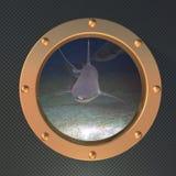 Shark on the porthole Royalty Free Stock Photo