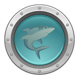 Shark in porthole Royalty Free Stock Images