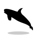 Shark predator black silhouette animal. Vector Illustrator Stock Photography