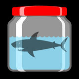 Shark in preserving jar Royalty Free Stock Photos