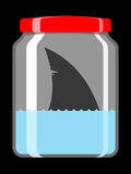 Shark in preserving jar Royalty Free Stock Photo