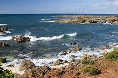Shark's Cove Stock Image