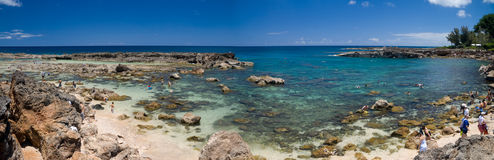 Shark's Cove Panorama Royalty Free Stock Photography