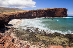Shark's Cove Stock Images