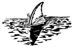 Shark's dorsal fin cuts the surface royalty free illustration