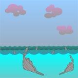 0316_39 shark. Saw fish vector background. Marine Character. Great white shark vector illustration