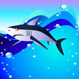 Shark and sea Royalty Free Stock Photo