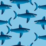 Shark seamless pattern Stock Photos