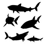 Shark set vector. Shark set of silhouettes vector stock illustration