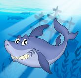 Shark with shipwreck. Color illustration Stock Photo