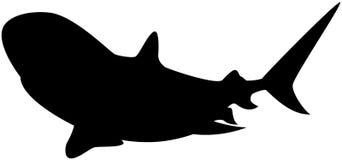Shark Silhouette Stock Image