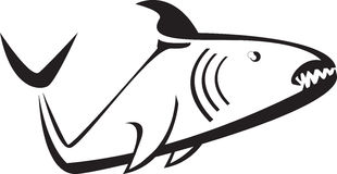 Shark. Silhouette of a shark black and white gills eye and fin Royalty Free Stock Photos