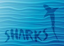 Shark silhouette in blue water Royalty Free Stock Photos