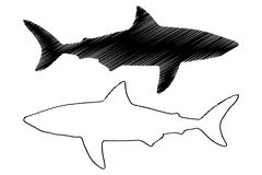 Shark silhouette vector Royalty Free Stock Photo