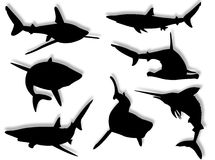 Shark Silhouettes Royalty Free Stock Photography