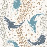 Shark and silurus Royalty Free Stock Image