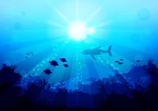 Shark and small fish are circling under the water illuminated by sunlight and rays, view with the bottom of the ocean vector illustration