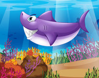A shark smiling at the bottom of the sea. Illustration of a shark smiling at the bottom of the sea Stock Images