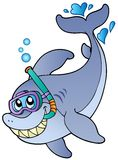 Shark snorkel diver Royalty Free Stock Photography