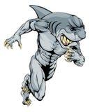 Shark sports mascot running Royalty Free Stock Photos