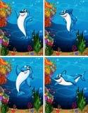 Shark swimming under the sea vector illustration