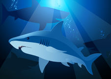 Shark swimming under the sea with sunlight Royalty Free Stock Photography