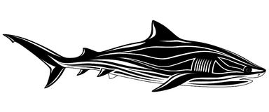 Shark, tattoo Royalty Free Stock Images