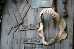 Shark Teeth. Live Bait and Tackle Store royalty free stock image
