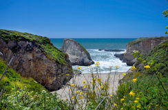 Free Shark Tooth Cove Stock Image - 72774061