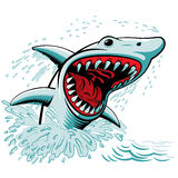 The Shark. Shark vector drawing. Scary and powerful jaws Stock Photos
