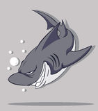 Shark Vector Royalty Free Stock Images
