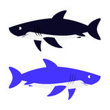 Shark vector illustration. Royalty Free Stock Photography