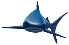 Shark. Vector illustration on white background. Blue shark. Vector illustration on white background Stock Illustration